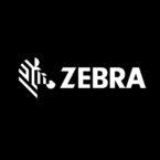 Zebracat